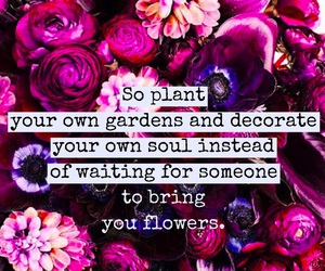 flowers and quote image
