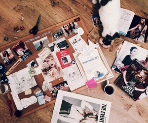 cat, journals, and magazines image