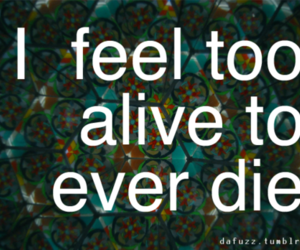 quote, alive, and text image