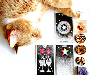amethyst, cat, and crystals image