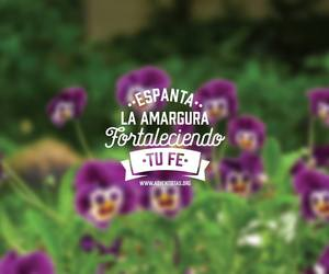 flores, dios, and frases image
