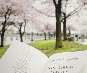 book, the great gatsby, and photography image