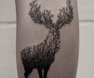 tatuaggi, deer, and ink image