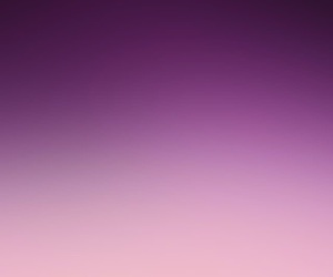 gradient, puple, and rose image