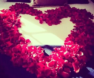 love, rose, and heart image