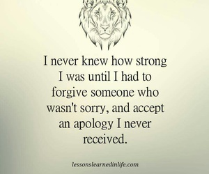 apology, forgive, and strong image