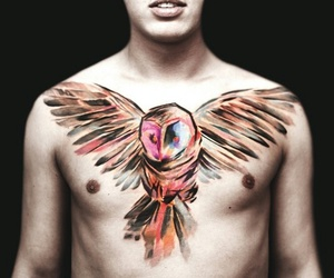 tattoo, owl, and watercolor image