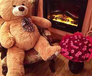 bear, flowers, and rose image
