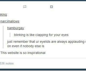 tumblr, eyes, and funny image