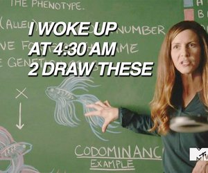 funny, teachers, and teen wolf image