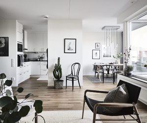 grey, plants, and Scandinavian image