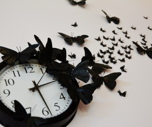 clock, butterfly, and black image