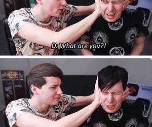 funny, phan, and idiots image