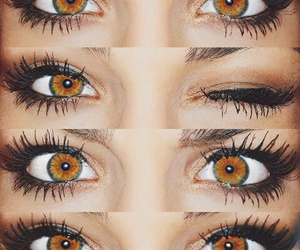 eyes, brown, and makeup image