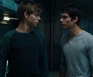thomas sangster and the maze runner image