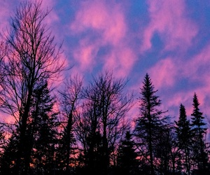 night, pink, and pretty image