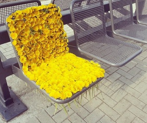 flowers, yellow, and chair image