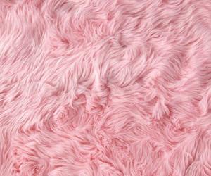pink, fur, and wallpaper image