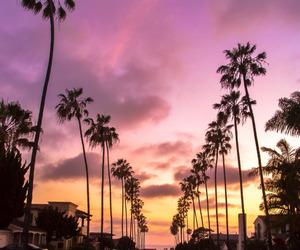 palms, sunset, and california image