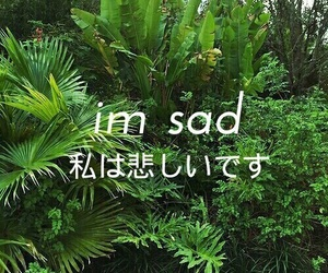 sad, japanese, and grunge image