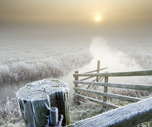 cold, fence, and field image
