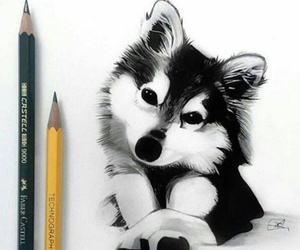 drawing, art, and dog image