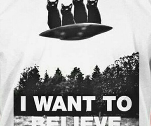 alien, believe, and cats image