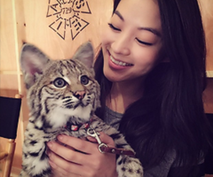 arden cho, teen wolf, and cute image