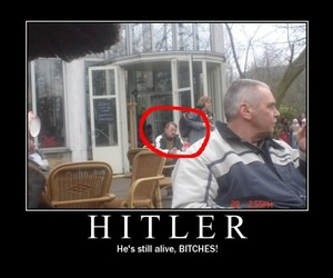 funny and hitler image