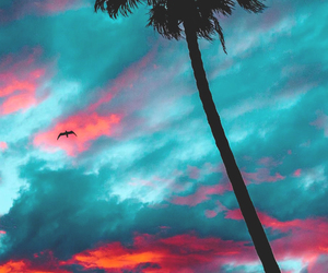 sky, photography, and summer image