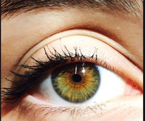 eyes, green, and mascara image