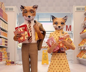 fantastic mr fox, fox, and wes anderson image