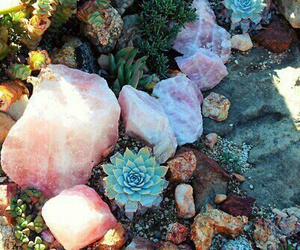 nature, crystal, and plants image