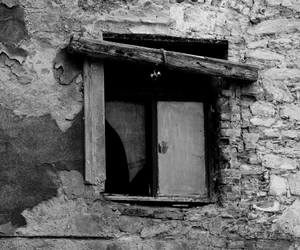 b&w, window, and black and white image