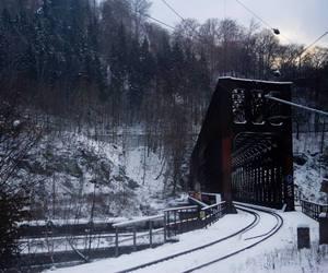 cold, carolmariga, and snow image