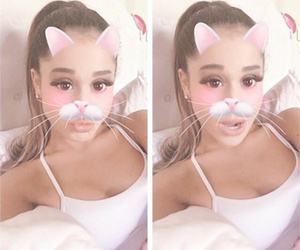 ariana grande, cat, and kitty image