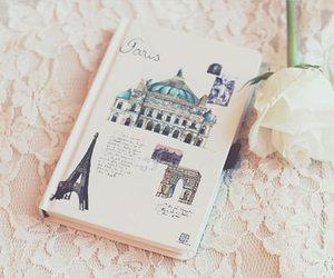 paris, book, and rose image