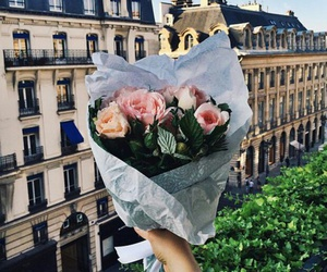 flowers, rose, and paris image