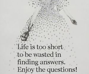 life, quote, and question image