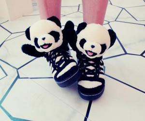 panda and shoes image