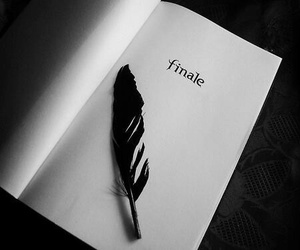 Finale, hush hush, and book image