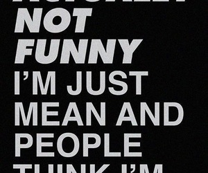 funny, mean, and quotes image