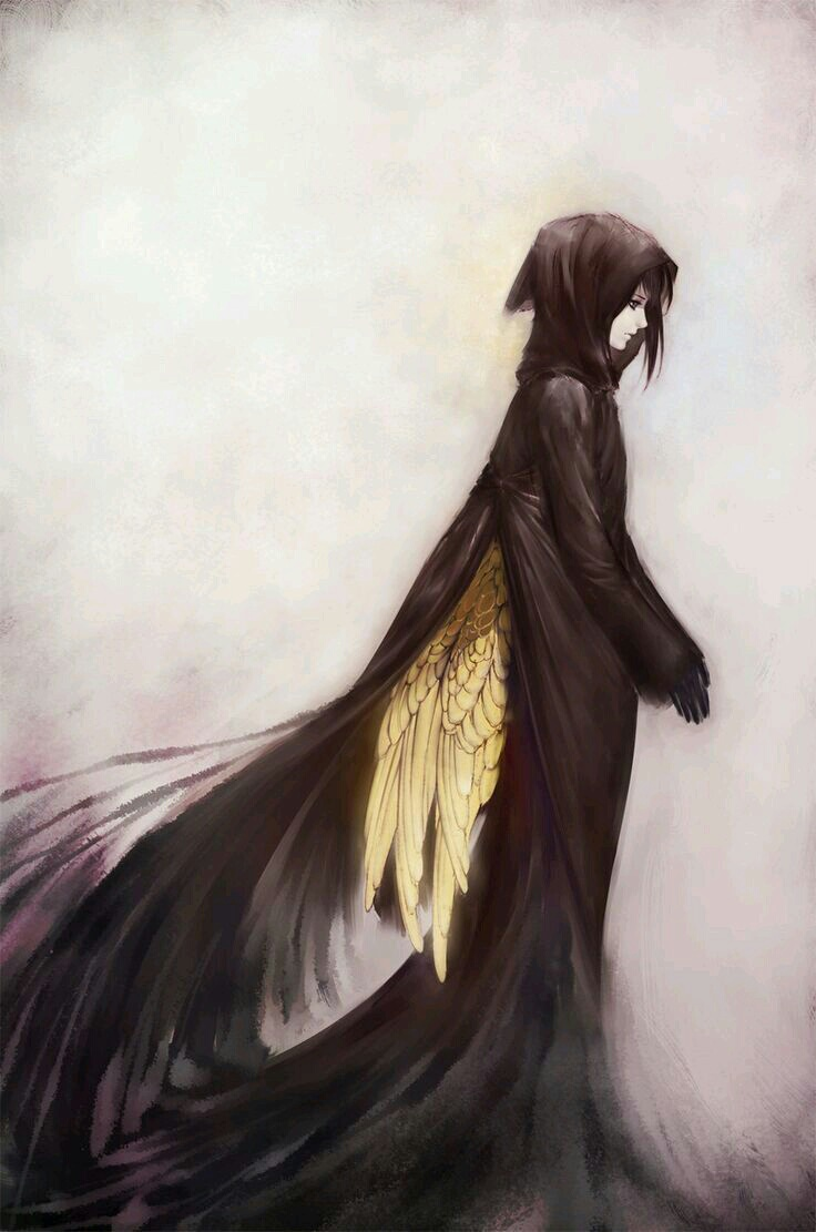 angel, wings, and anime image