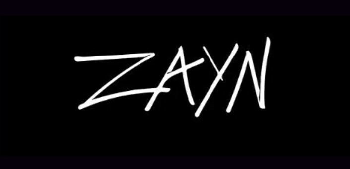 Image About Text In Zayn By Ego Sum Qui Sum On We Heart It