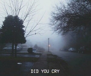cry, did, and you image
