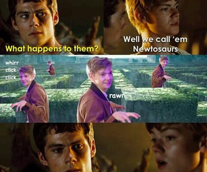 newt, thomas, and tmr image