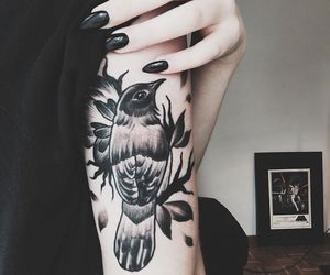 tattoo, black, and bird image