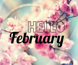 february, hello, and flowers image