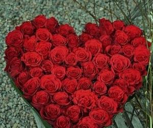 heart, sweet dreams, and hearts image
