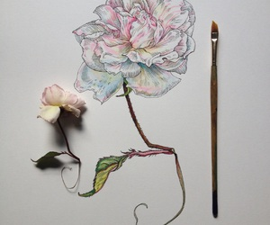 'flowers', 'art', and 'pale' image
